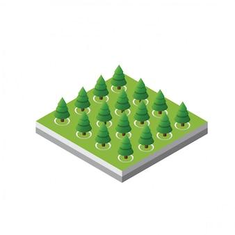 Foresta isometrica degli alberi 3d