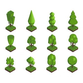 Illustrazione isometrica dell'albero. Vettore Premium