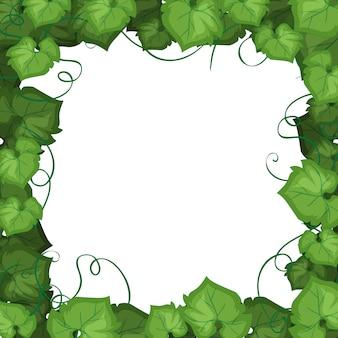 Un bordo di foglie di edera