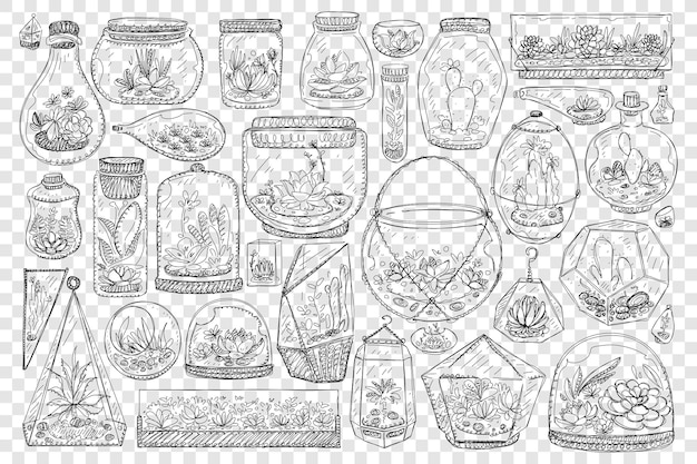 Vasi per l'illustrazione stabilita di doodle di cactus in crescita