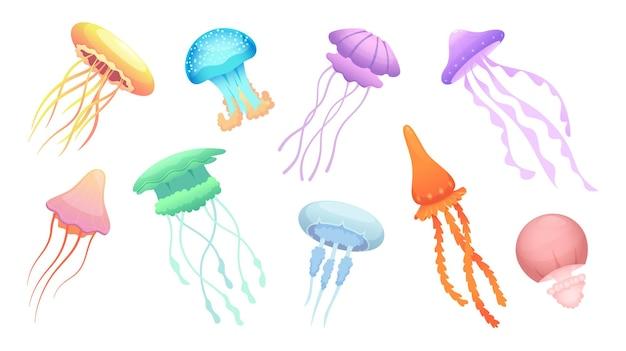 Medusa. animali selvatici subacquei bellissimo gruppo colorato di vettore di meduse. illustrazione della fauna selvatica delle meduse, animali marini sott'acqua
