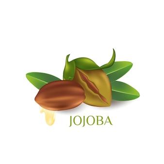 Cosmetico naturale per la cura della pelle alla jojoba
