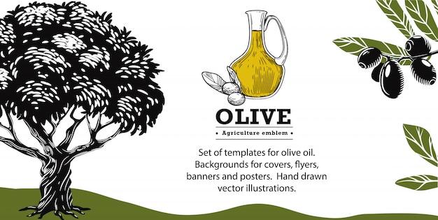 Brocca con olio d'oliva