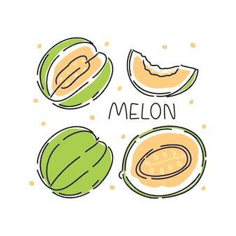 Succoso melone intero e fette su uno sfondo bianco. illustrazione astratta di vettore.