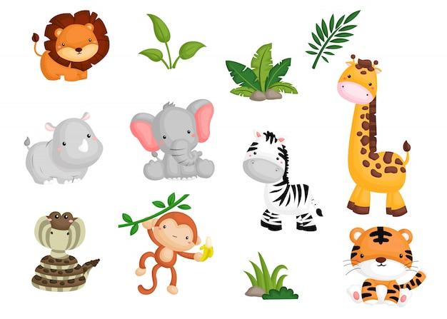 Set di immagini di animali della giungla