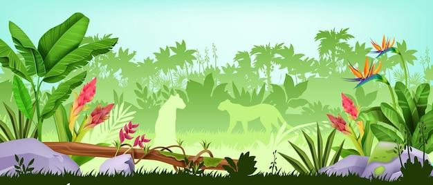 Sfondo giungla foresta pluviale tropicale paesaggio legno esotico background