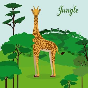 Design della giungla