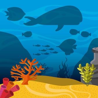 Icona k. progettazione di vita marina. grafica vettoriale