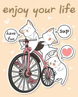 Gatti kawaii con una bicicletta vintage