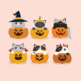 Kawaii cute flat design halloween cat and pumpkin set