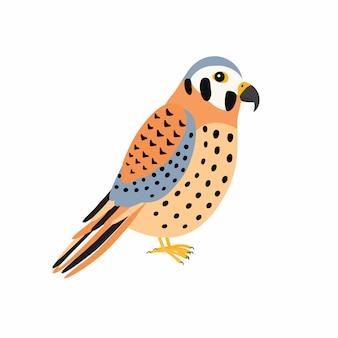 Uccello del gheppio. illustrazione vettoriale isolato su sfondo bianco. concetto di fauna selvatica di uccelli predatori nel design in stile piatto.