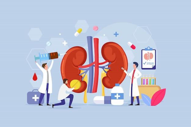 Concetto di design del trattamento della malattia renale con persone minuscole