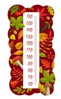 Grafico dell'altezza dei bambini, foglie autunnali, bacche, funghi e ghiande, misuratore di crescita vettoriale. scala di misura per bambini o righello per l'altezza del bambino con raccolto autunnale di cartone animato di foglie di acero, betulla o quercia
