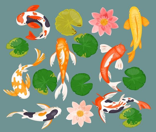 Pesci della carpa di koi, simbolo fortunato di fortuna asiatica di prosperità. fumetto che nuota pesci acquatici sott'acqua, fiore di loto rosa, foglia rotonda verde, collezione piatta