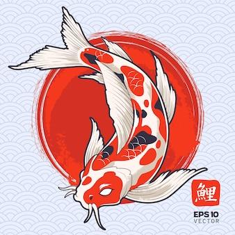 Uno spettacolare pesce koi sul cerchio rosso dipinto. carpa giapponese.