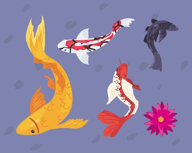 Pesci koi con fiore