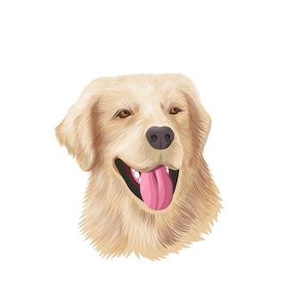 Ritratto del cane del primo piano del documentalista di labrador. schizzo di animali da compagnia a colori labrador