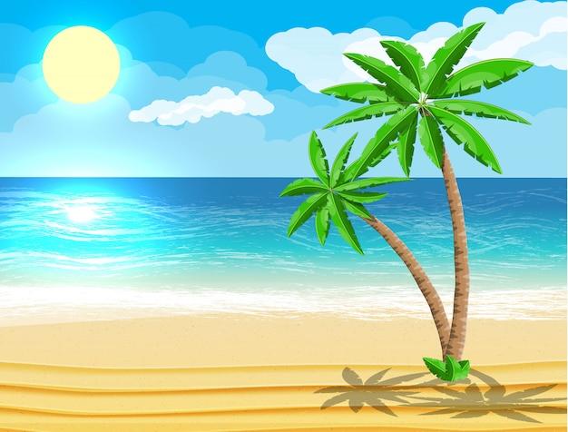 Paesaggio della palma sulla spiaggia