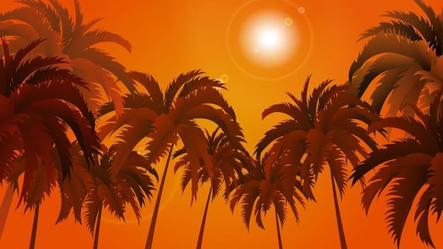 Paesaggio di palme su uno sfondo di cielo e sole astratti