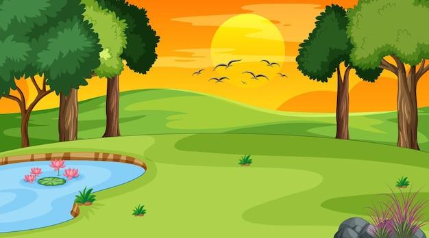 Scena del paesaggio della foresta con fiume e molti alberi