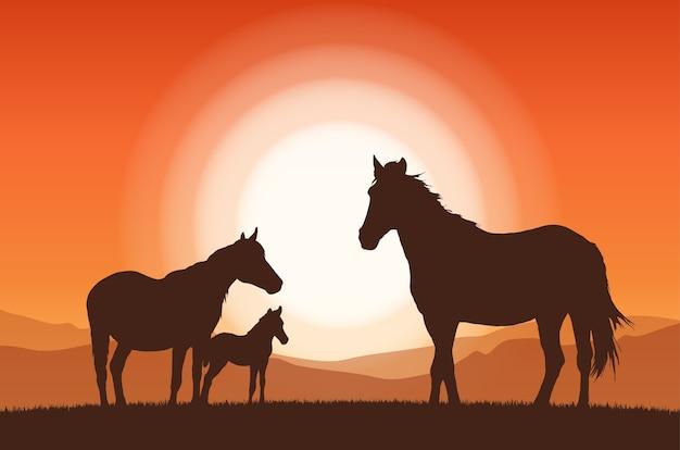Paesaggio con tramonto e silhouette di cavalli di famiglia.