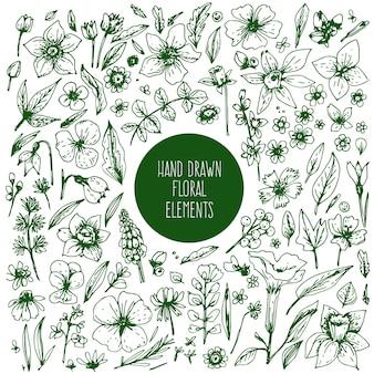 Grande insieme di fiori, foglie e bacche disegnati a mano con inchiostro e penna.