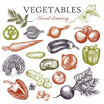Un grande set di verdure disegnate a mano. stile di incisione