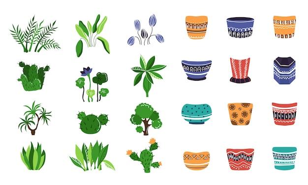 Grande set di piante in vaso o fiori in vaso