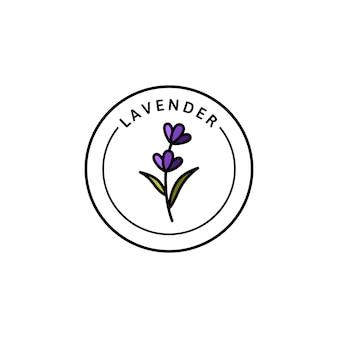 Lavanda logo lavanda in stile lineare di tendenza. vector lavanda organica a base di erbe icona del modello di progettazione dell'imballaggio e dell'emblema. può essere usato per olio, sapone, crema, profumo, tè e altre cose