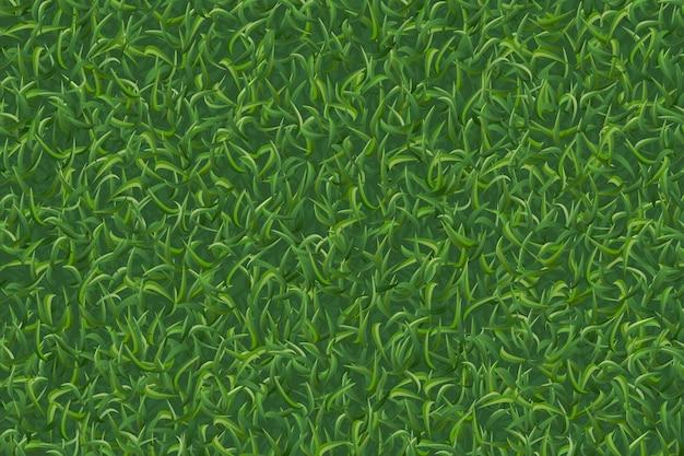 Fondo di struttura dell'erba del prato inglese.