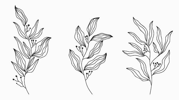 Set disegno arte linea foglia.