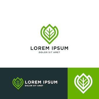 Modello di progettazione di logo foglia