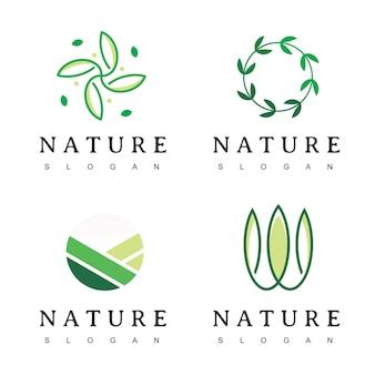 Foglia natura log
