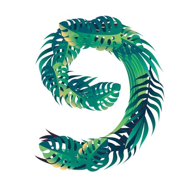 Foglia numero 9 con diversi tipi di foglie verdi e fogliame stile fumetto design piatto illustrazione vettoriale isolato su sfondo bianco.