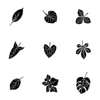 Insieme di vettore di foglia. semplice illustrazione a forma di foglia, elementi modificabili, può essere utilizzata nella progettazione del logo