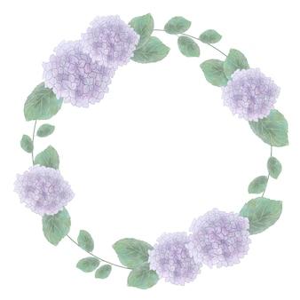 Affitto dell'ortensia viola