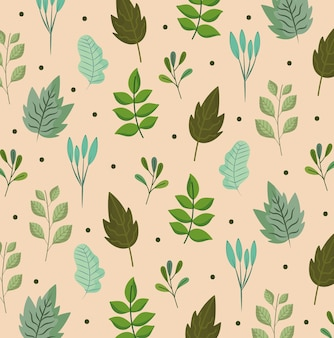 Lascia il ramo naure botanica ecologia fogliame natura illustrazione dello sfondo