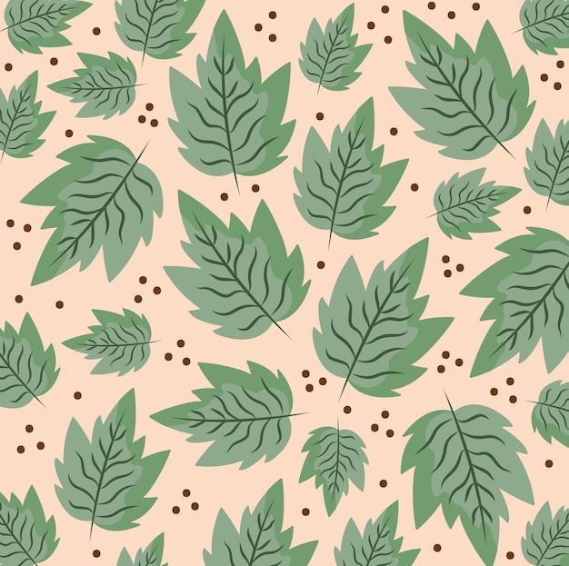 Foglie fogliame natura bacche decorazione botanica illustrazione dello sfondo
