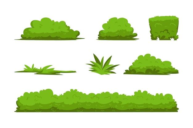 Foglie di erba verde