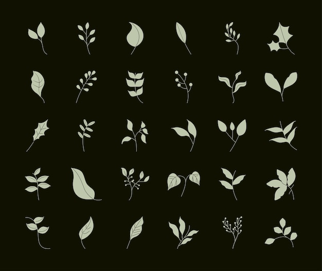 Foglie stile linea, rami albero pianta foglia naturale