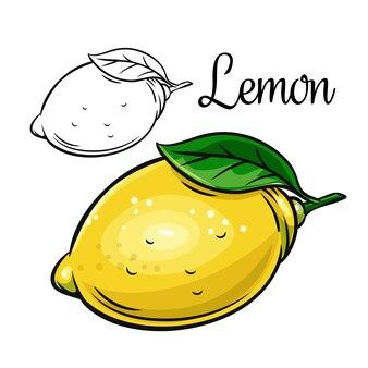 Icona di disegno di limone agrumi disegnati a mano