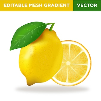 Illustrazione di frutta al limone
