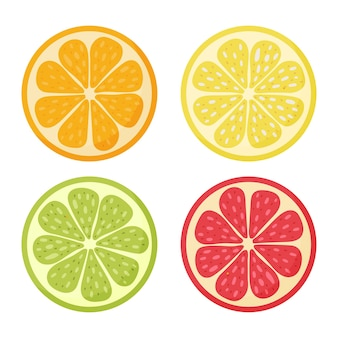 Limone, arancia, pompelmo, lime. set di agrumi doodle disegnato a mano vector illustration