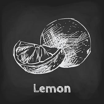 Elemento di utilizzo del design disegnato a mano dell'illustrazione di schizzo del limone