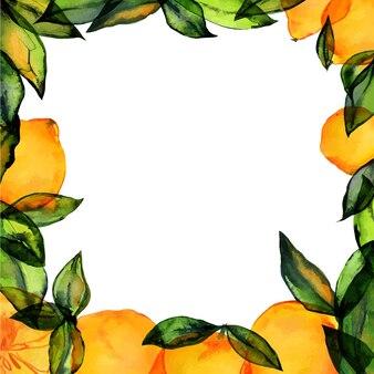 Cornice quadrata limone con acquerello disegnato a mano tracciato