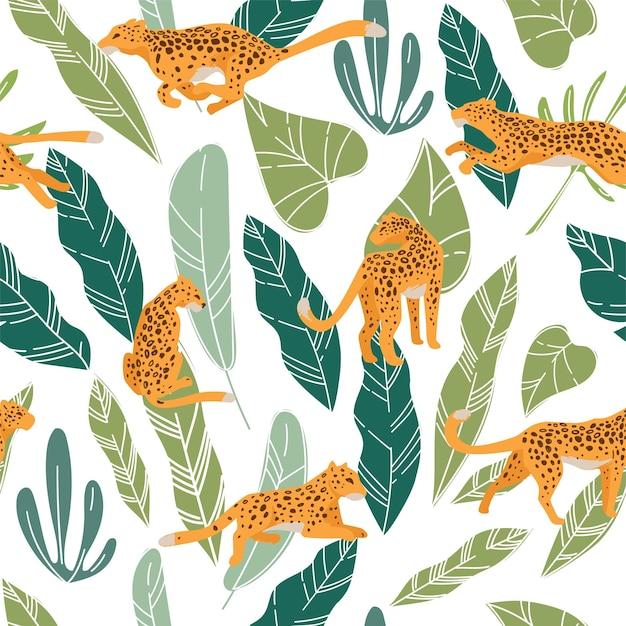 Leopardo o ghepardo nascosto tra lussureggianti foglie di monstera