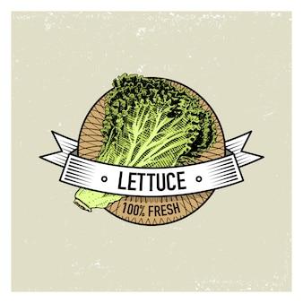 Set di etichette, emblemi o logo vintage di lattuga per cibo vegetariano, verdure disegnate a mano o incise. stile retrò fattoria americana.