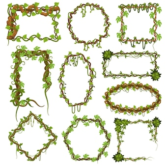 Cornici di viti liana. piante tropicali rampicanti della foresta pluviale con foglie, bordi di piante liane della giungla
