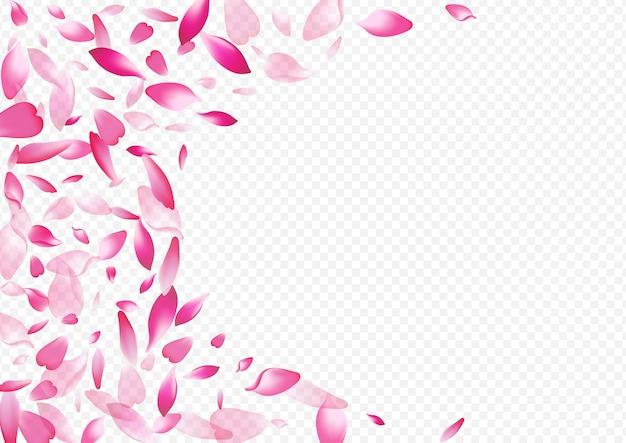 Sfondo trasparente di vettore di coriandoli leggeri. struttura dell'aria del petalo. modello di invito rosa. illustrazione del giappone della ciliegia. congratulazioni al cielo di foglie luminose.