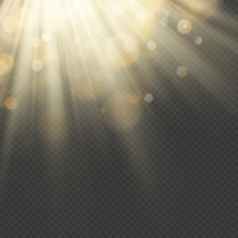 Effetto luce con glitter, paillettes. raggi brillanti con bokeh. particelle di sole e scintille con un punto culminante.